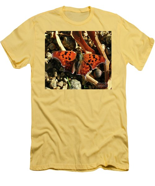 Men's T-Shirt (Slim Fit) featuring the photograph Question Mark Butterfly by Donna Brown