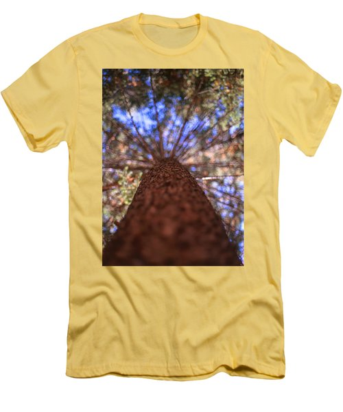 Rainbow Pine Men's T-Shirt (Slim Fit) by Aaron Aldrich