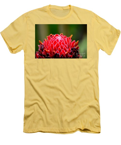 Red Torch Ginger Flower Head From Tropics Singapore Men's T-Shirt (Slim Fit) by Imran Ahmed