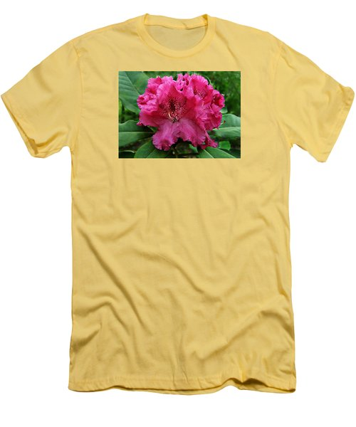 Rhododendron ' Bessie Howells ' Men's T-Shirt (Slim Fit) by William Tanneberger