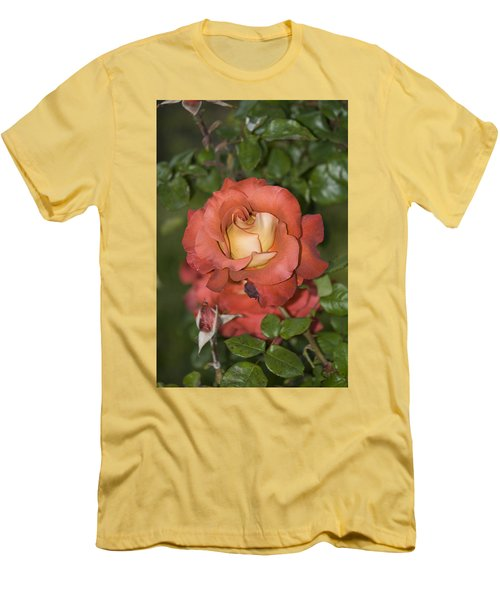 Rose 6 Men's T-Shirt (Athletic Fit)