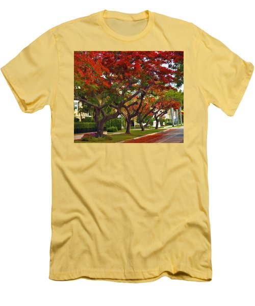 Royal Poinciana Trees In Blooming In South Florida Men's T-Shirt (Slim Fit)