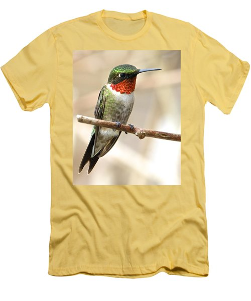 Ruby Throated Hummingbird Men's T-Shirt (Athletic Fit)