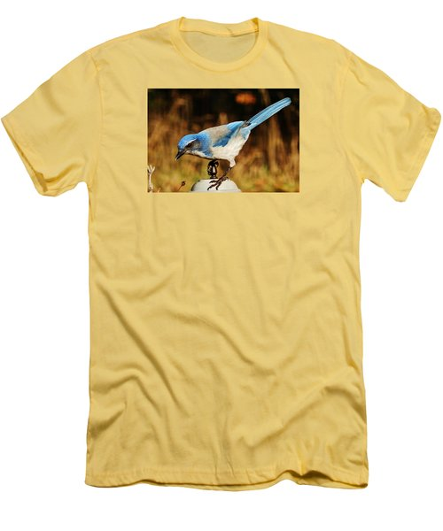 Men's T-Shirt (Slim Fit) featuring the photograph Scrub Jay by VLee Watson