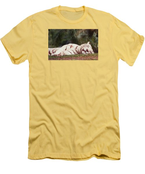Sleeping White Snow Tiger Men's T-Shirt (Athletic Fit)