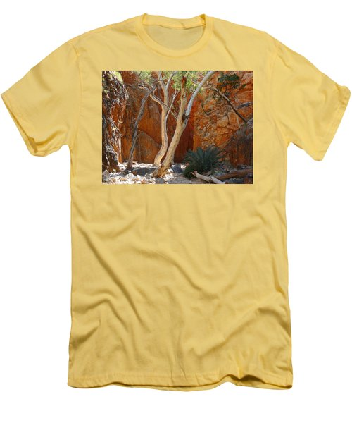 Standley Chasm Men's T-Shirt (Slim Fit) by Evelyn Tambour