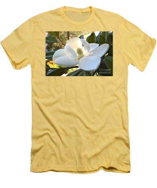 Sunlit Southern Magnolia Men's T-Shirt (Slim Fit)