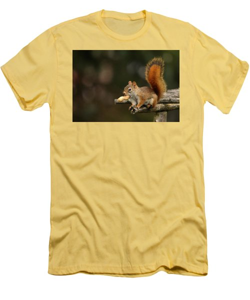 Surprised Red Squirrel With Nut Portrait Men's T-Shirt (Slim Fit) by Debbie Oppermann