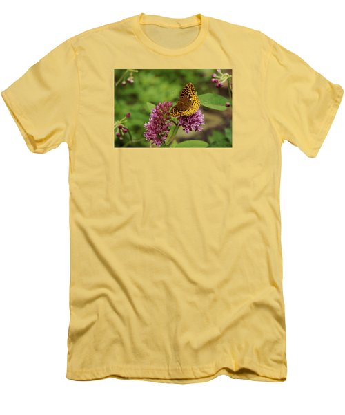 Sweet Nectar - Butterfly On Milkweed Art Print Men's T-Shirt (Athletic Fit)