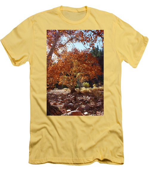 Sycamore Trees Fall Colors Men's T-Shirt (Athletic Fit)