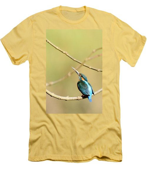 The Common Kingfisher Men's T-Shirt (Athletic Fit)
