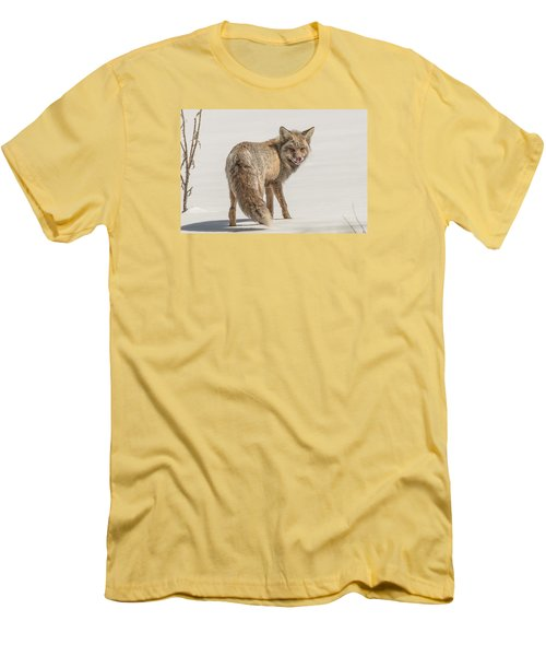 The Hungry Fox Men's T-Shirt (Slim Fit) by Yeates Photography