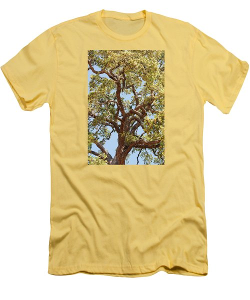 The Old Tree Men's T-Shirt (Slim Fit) by Connie Fox