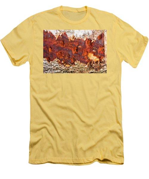 Tree Closeup - Wood Texture Men's T-Shirt (Slim Fit) by Matthias Hauser