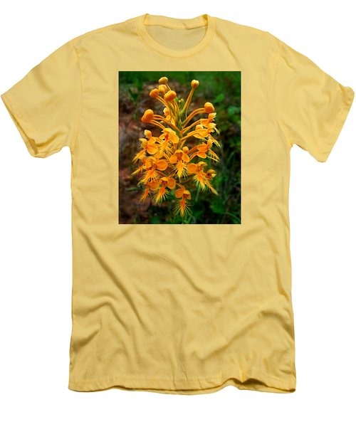 Wild Yellow Fringed Orchid Men's T-Shirt (Slim Fit) by William Tanneberger