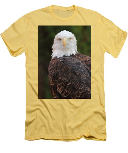 Men's T-Shirt (Slim Fit) featuring the photograph Bald Eagle by Coby Cooper
