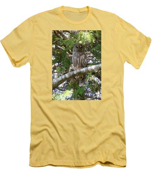 Barred Owl  Men's T-Shirt (Slim Fit) by Francine Frank