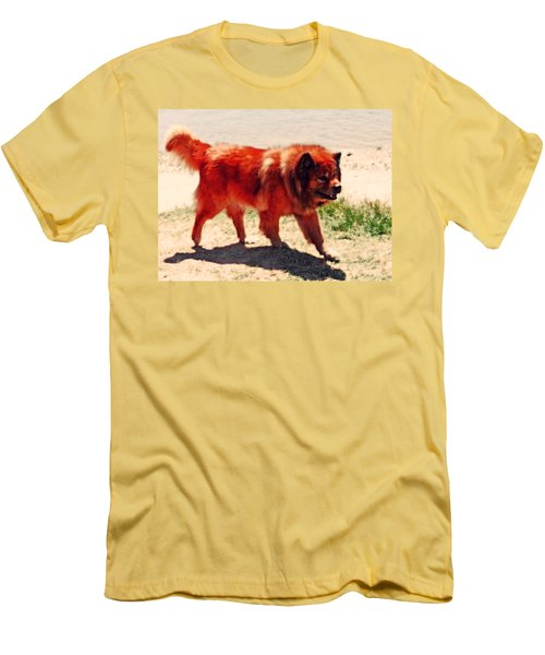 Chow Chow Men's T-Shirt (Athletic Fit)