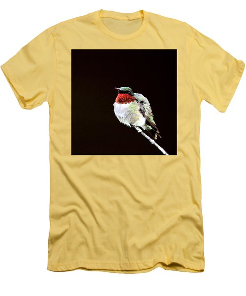 Hummingbird - Ruffled Feathers Men's T-Shirt (Athletic Fit)