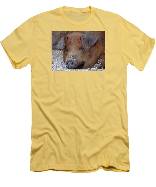 This Little Piggy Took A Nap Men's T-Shirt (Athletic Fit)