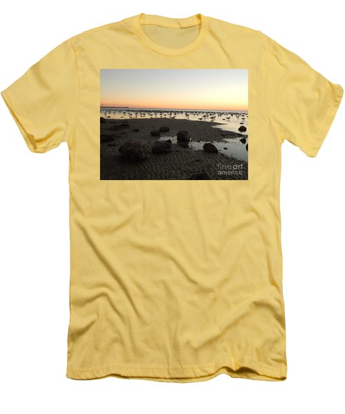 Beach Rocks Barnacles And Birds Men's T-Shirt (Athletic Fit)
