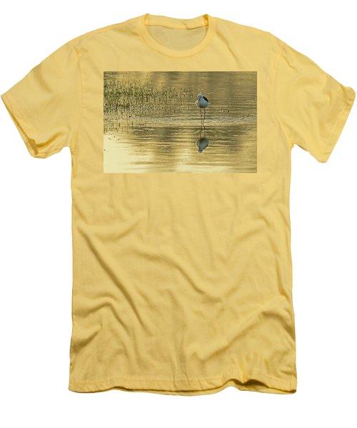 Black-winged Stilt Men's T-Shirt (Athletic Fit)