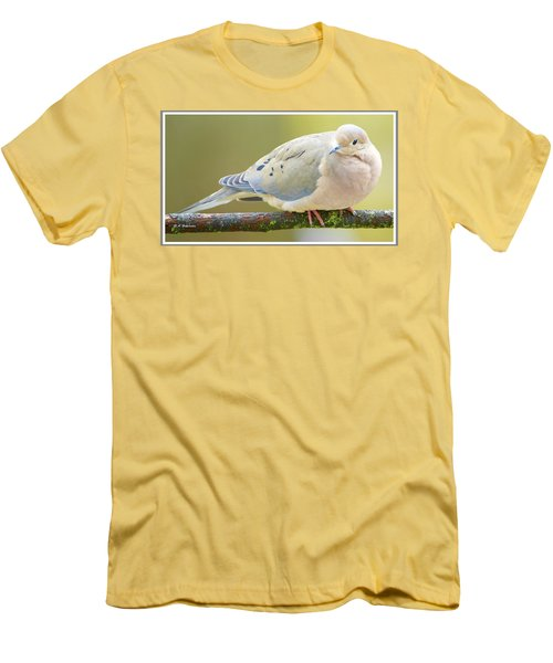 Mourning Dove On Tree Branch Men's T-Shirt (Athletic Fit)