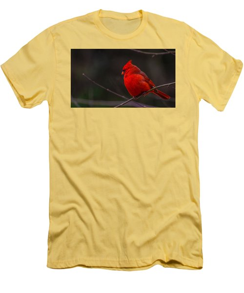 Men's T-Shirt (Slim Fit) featuring the photograph Quality Quiet Time  by John Harding
