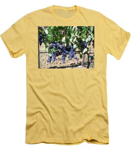 Grapevine Men's T-Shirt (Athletic Fit)