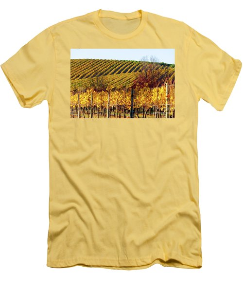 Autumn Vines Men's T-Shirt (Athletic Fit)