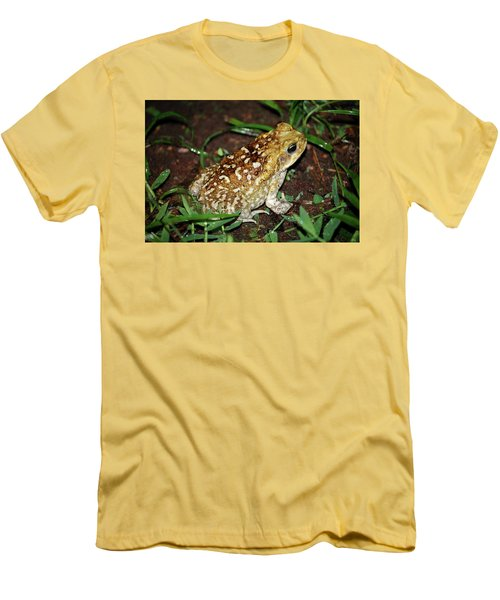 Cane Toad Men's T-Shirt (Slim Fit) by Breck Bartholomew