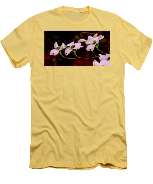 3 Dogwood Blooms On A Branch Men's T-Shirt (Athletic Fit)