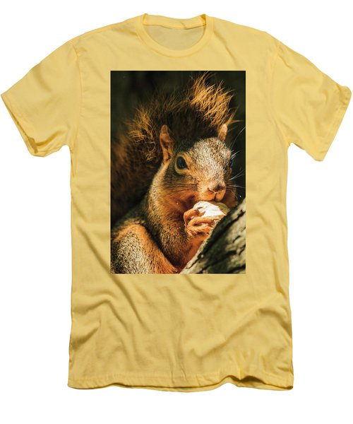 A Squirrel And His Nut Men's T-Shirt (Slim Fit) by Joni Eskridge
