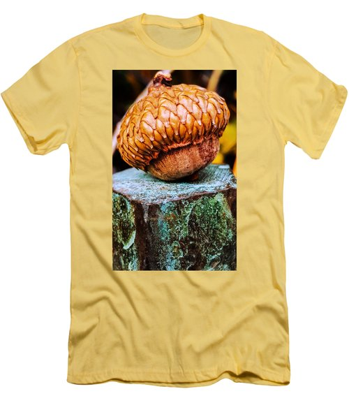 Acorn Men's T-Shirt (Slim Fit) by Bruce Carpenter