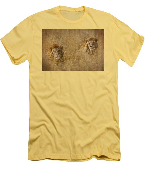 African Lion Brothers Men's T-Shirt (Slim Fit) by Kathy Adams Clark