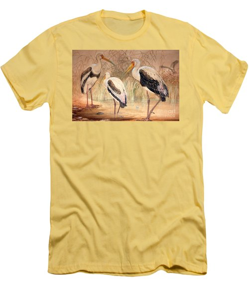 African Tantalus Pseudotantalus Ibis Men's T-Shirt (Athletic Fit)