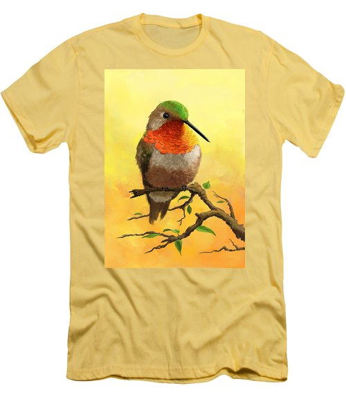 Allen's Hummingbird Men's T-Shirt (Athletic Fit)