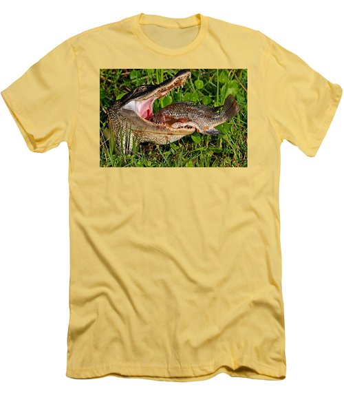 Alligator Eating Fish Men's T-Shirt (Athletic Fit)