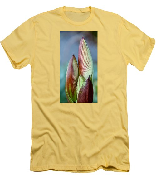 Amaryllis Buds Men's T-Shirt (Slim Fit) by Werner Lehmann