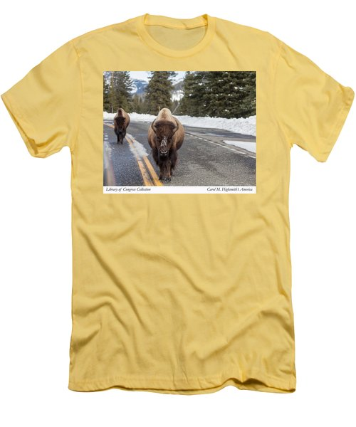 Men's T-Shirt (Slim Fit) featuring the photograph American Bison In Yellowstone National Park by Carol M Highsmith