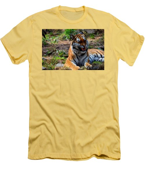 Men's T-Shirt (Slim Fit) featuring the mixed media Amur Tiger 3 by Angelina Vick