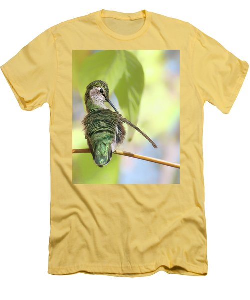 Anna's Hummingbird - Preening Men's T-Shirt (Slim Fit) by Nikolyn McDonald