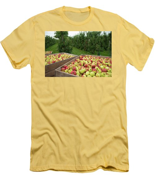Men's T-Shirt (Slim Fit) featuring the photograph Apple Harvest by Hans Engbers