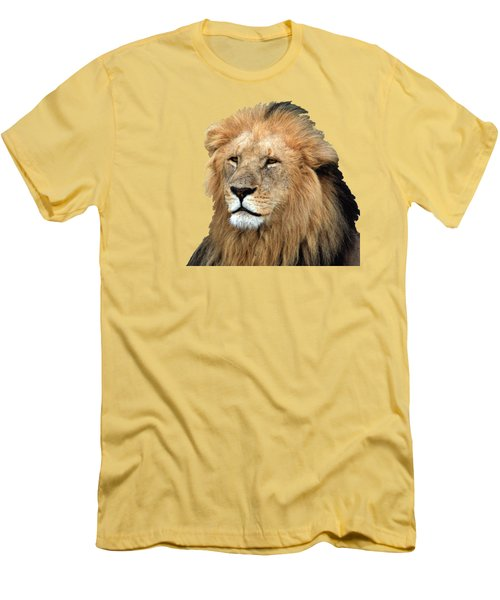 Masai Mara Lion Portrait    Men's T-Shirt (Athletic Fit)