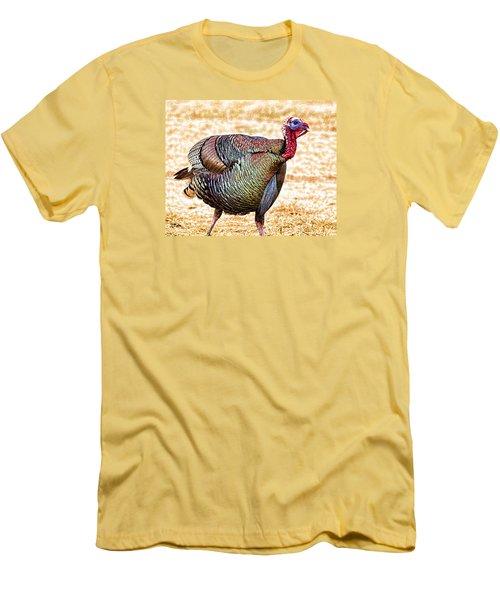 Sir Longbeard Men's T-Shirt (Slim Fit) by Bill Kesler