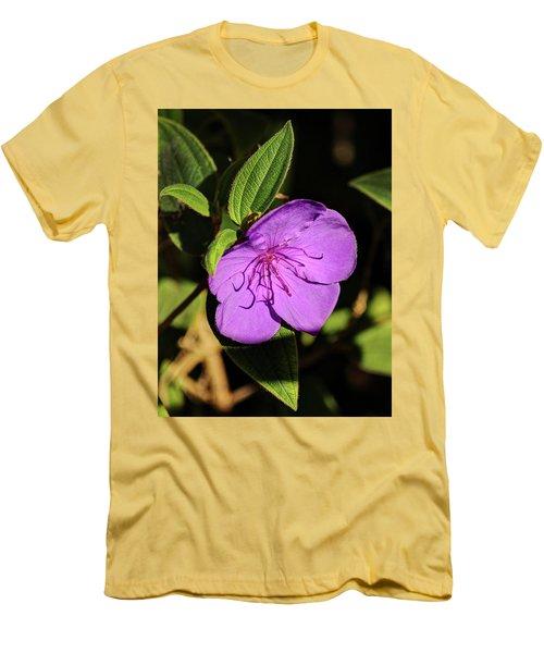 Asian Melastome Men's T-Shirt (Athletic Fit)