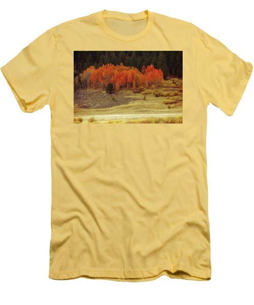 Aspen, October, Hope Valley Men's T-Shirt (Slim Fit) by Michael Courtney
