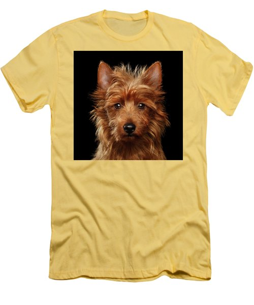 Australian Terrier Men's T-Shirt (Athletic Fit)