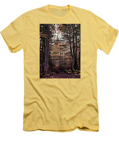Autumn Color In The Woods Men's T-Shirt (Slim Fit) by Joy Nichols