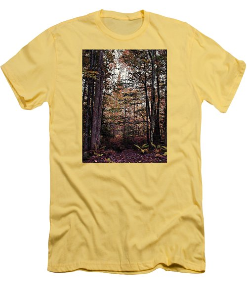 Autumn Color In The Woods Men's T-Shirt (Athletic Fit)